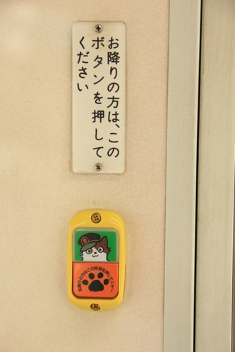 02_DPP_4347.JPG