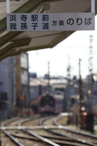 003_DPP_00000449.JPG