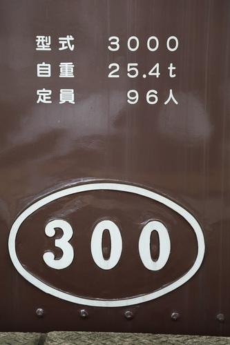 61_DPP_00005941.JPG